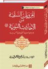 شیخ الاسلام ڈاکٹر محمد طاہرالقادری سلسلہ-مرویات-صوفیاء-1-المرویات-السلمیۃ-من-الاحادیث-النبویۃ